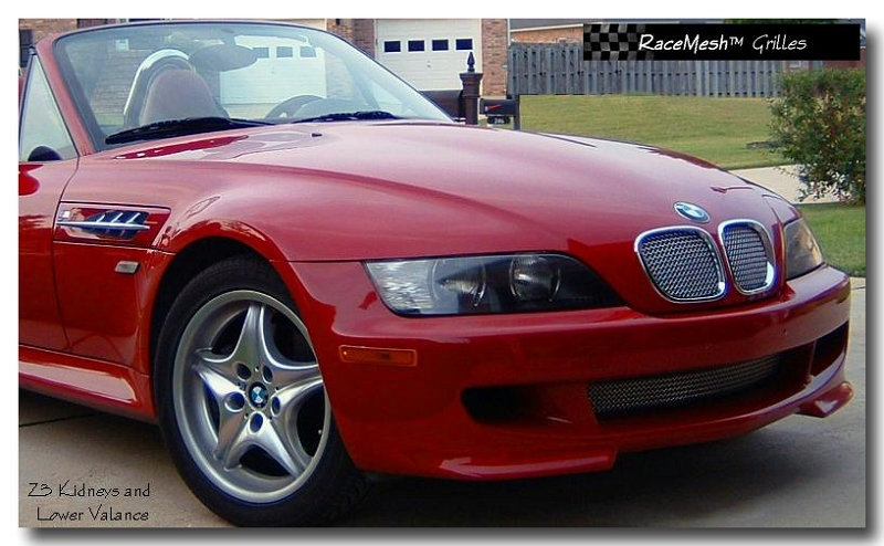 bmw e36 z3 m roadster upper kidneys 1996 03 bmw z3 roadster e36 1996