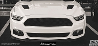 Ford Mustang S550 (2015-2017) Upper ONLY RaceMesh Grille One-Chamber Version - Original Style Weave